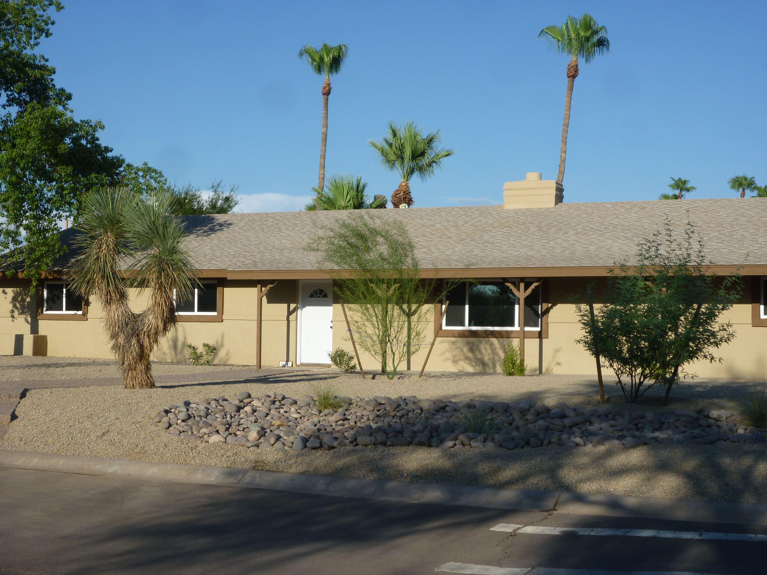 Soaptree Yucca, Palo Verde, Mesquite, & River Rock