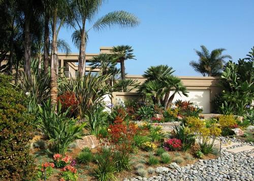 solana beach landscape design gallery c h gardens