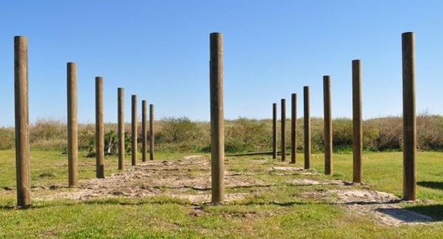 Solid Wood Uniform Diameter Poles and Pilings