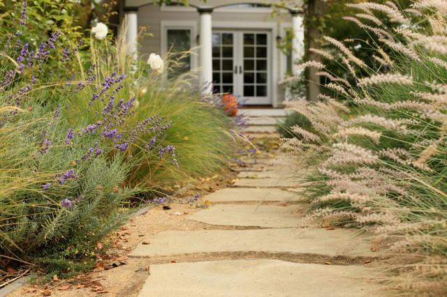 Sonoma cottage garden contemporary garden san for Sonoma garden designs