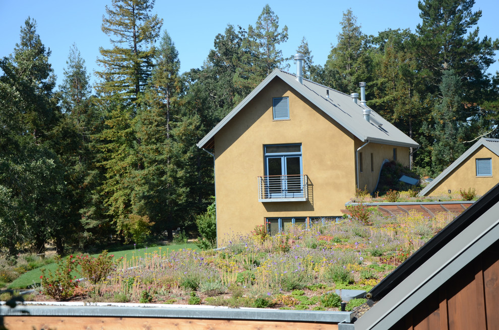 Inspiration for a farmhouse full sun rooftop landscaping in San Francisco.