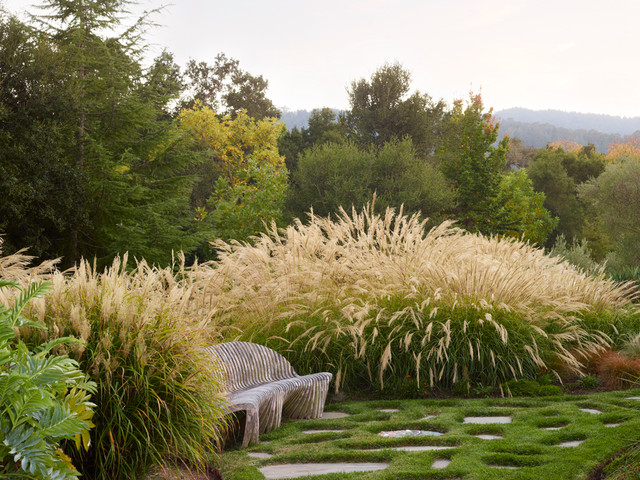 South african style in woodside mediterranean for Garden designs south africa
