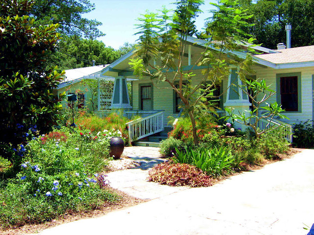 South tampa cottage tropical modern mix contemporary for Landscape design tampa