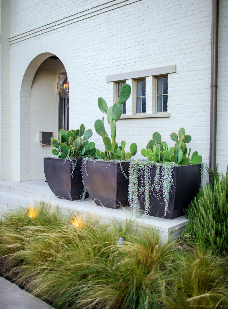 Photo of a small transitional partial sun front yard landscaping in Dallas for summer.