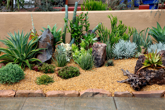 Frontyard landscape ideas succulent gardens design for Garden design using succulents