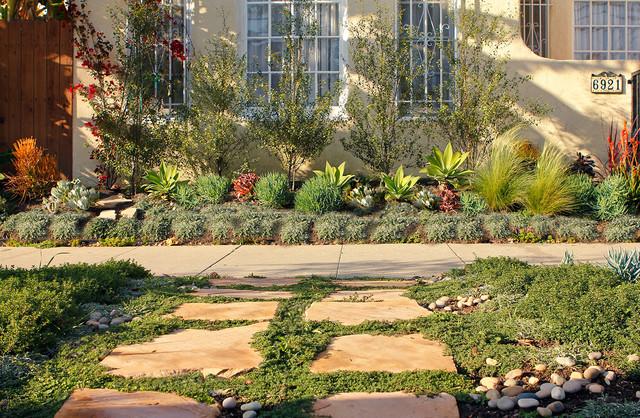 Spanish Drought Tolerant Garden Contemporary Landscape