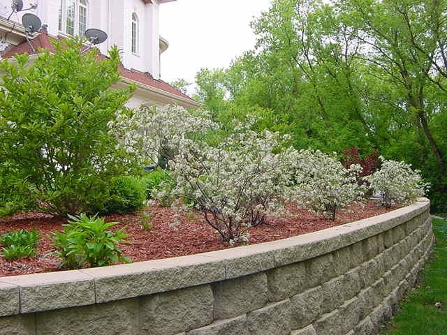 Spring & Fall Landscaping-Add Color to your Landscaping, Gardens & Outdoors modern landscape