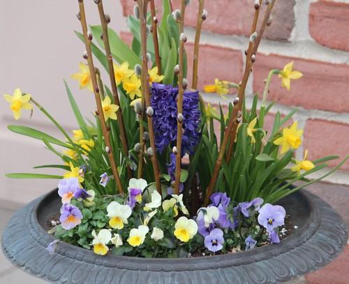 6 káprázatos virágkompozíció, ami bármely kertet elvarázsol