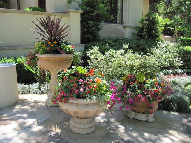 Spring Container Gardening traditional-landscape