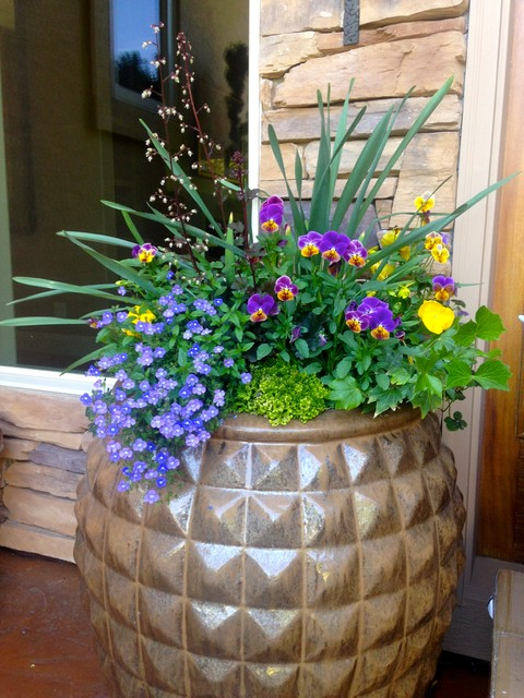 14 Colorful Spring Containers to Cheer Up Your Porch or Garden