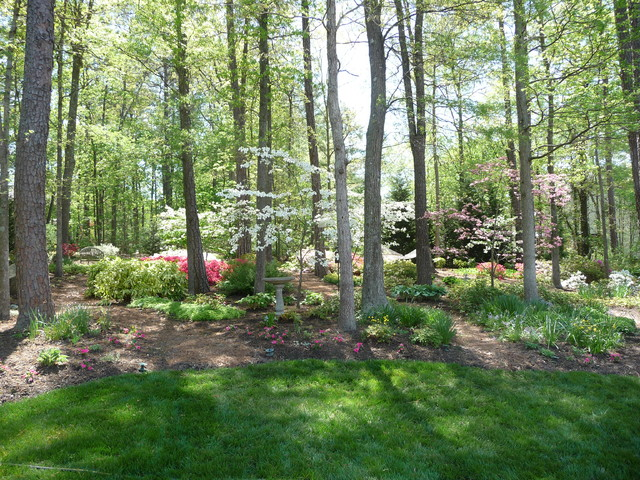 Spring in the woods traditional landscape richmond for Garden design richmond