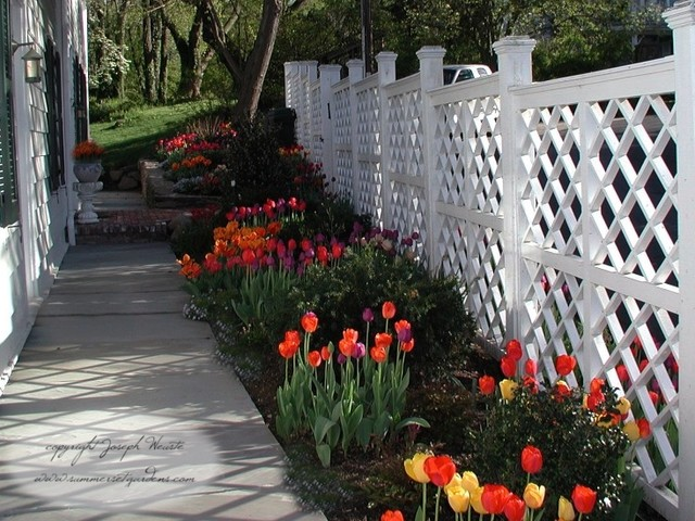 Spring Tulips And Trellis Design Traditional Landscape