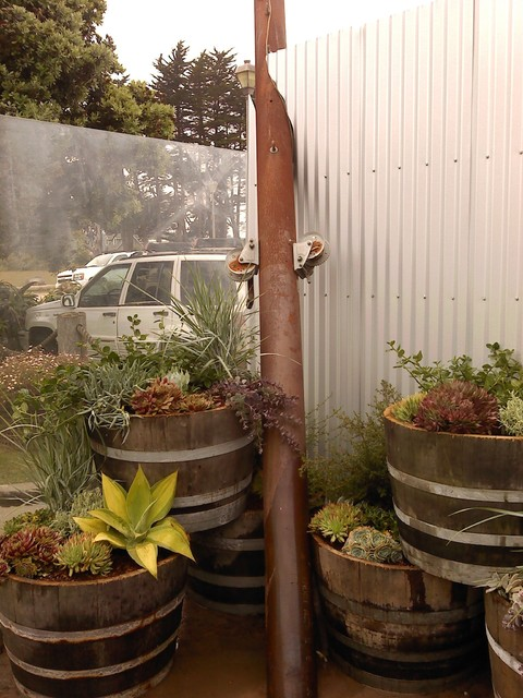 Stacked Wine Barrel Planting Eclectic Landscape San