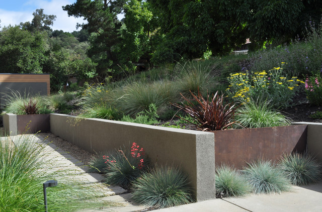 steel and stucco walls modern landscape