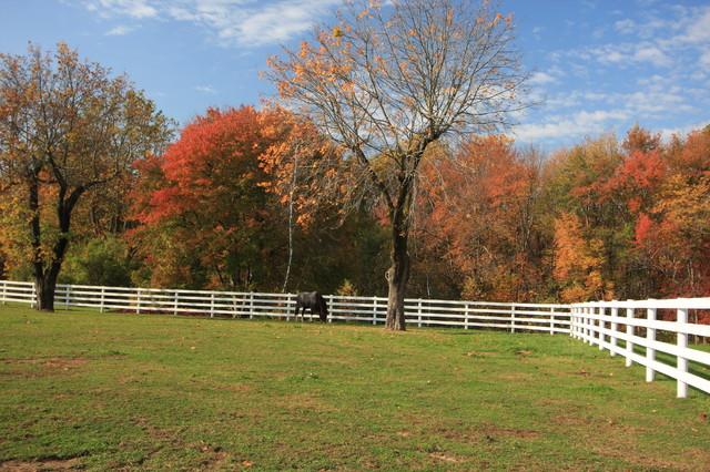 Steeple Chase Farm farmhouse-landscape
