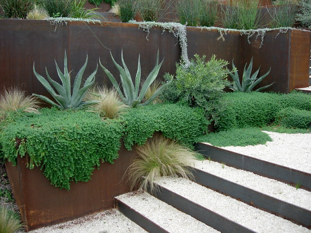 Great Plants For Lush Low Water Gardens