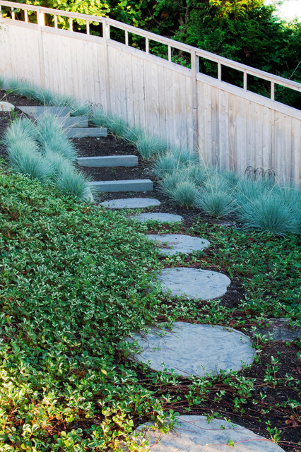 Steps down through grasses and strawberries
