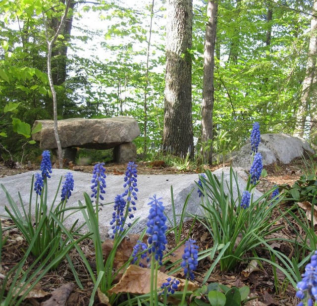 Landscaping Woodland Wa : Stone bench in woodland garden rustic landscape