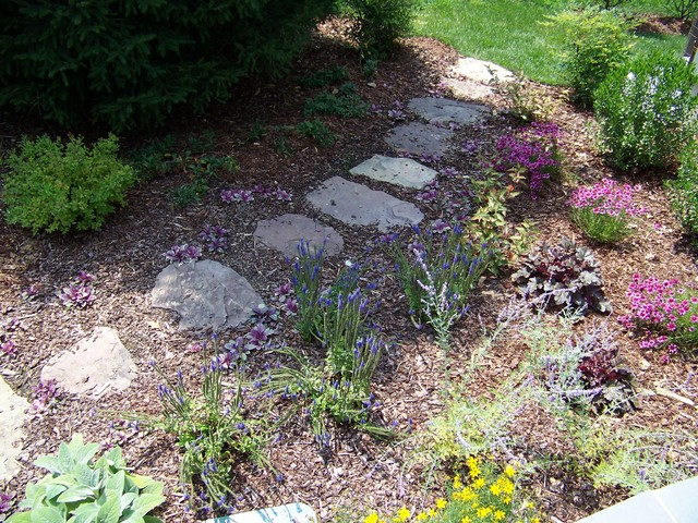 Stone Steppers Mixed Perennial Border Traditional