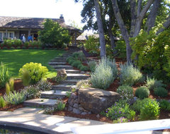 Woodside, CA traditional landscape