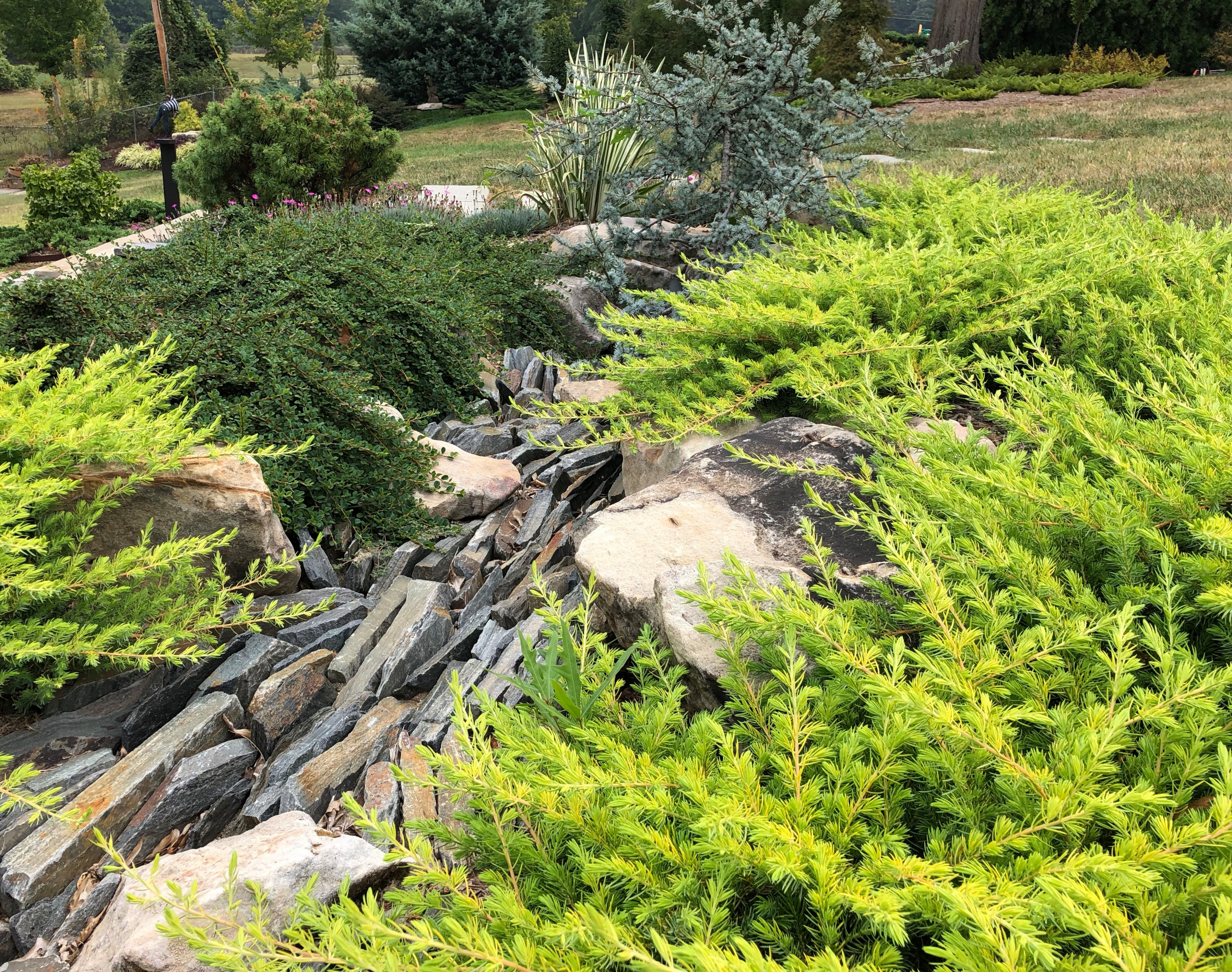 Stylized Japanese-Inspired Creek Bed