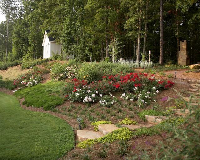 Suburban woodland garden for Suburban garden design ideas