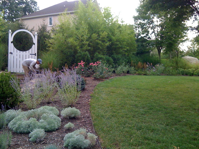 Suburban Woodland Garden Traditional Landscape Other Metro By Little Miracles Designs