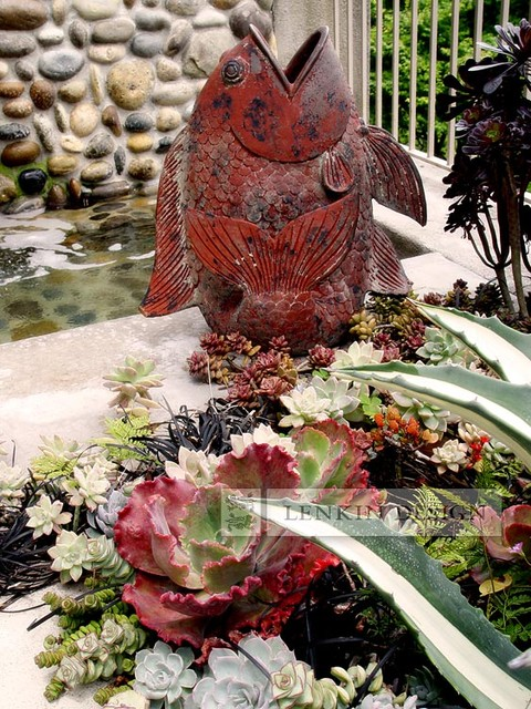 Succulent Fountain Garden and Fish Statue modern-landscape