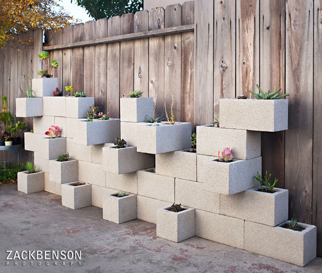 Succulent Planter Wall contemporary landscape