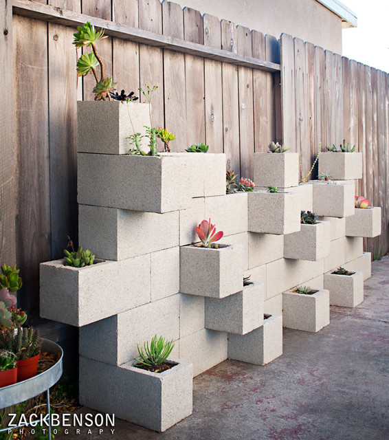 Succulent Planter Wall contemporary-landscape