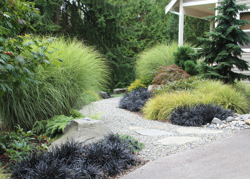 Add softness light and movement with ornamental grasses for Ornamental grass border design