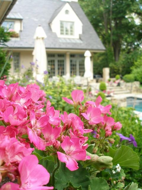 Summer's Garden traditional-landscape