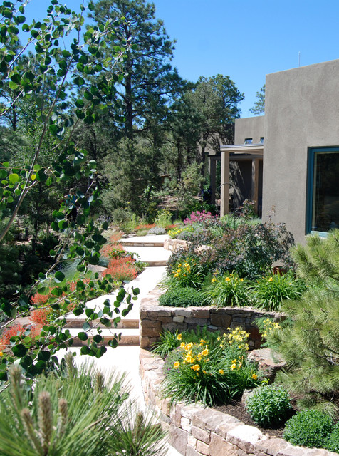 Summit house contemporary landscape albuquerque by for Landscaping rocks albuquerque