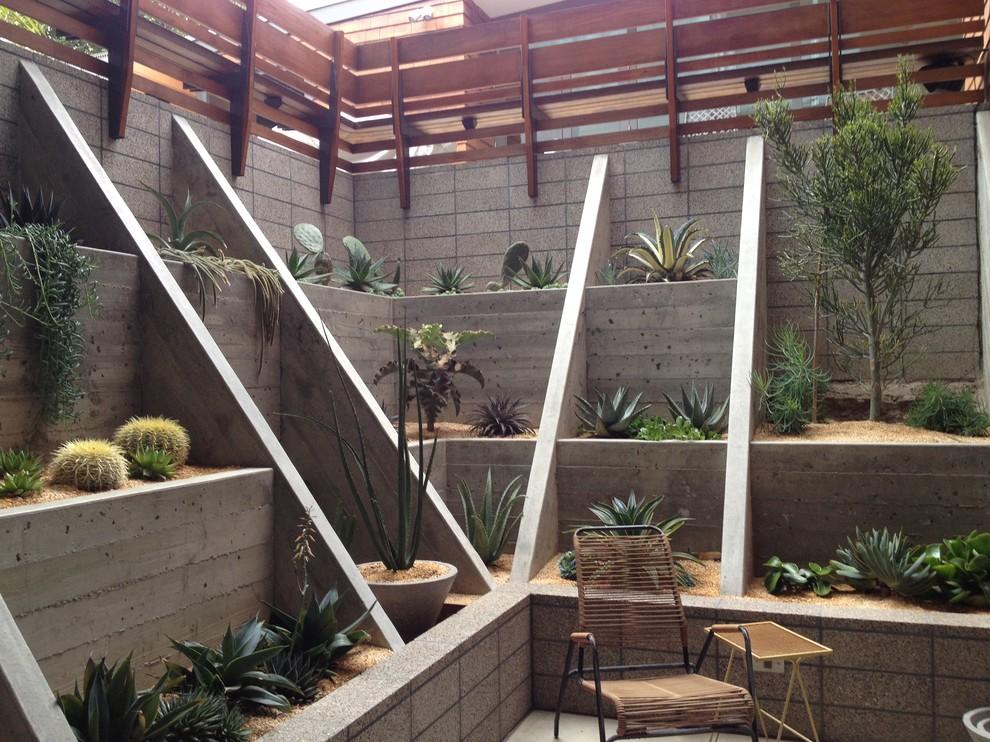 Sunken Succulent Cacti Garden Modern Landscape San