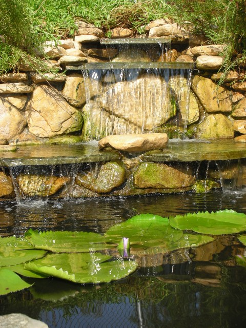 sunland water gardens growing grounds traditional-landscape