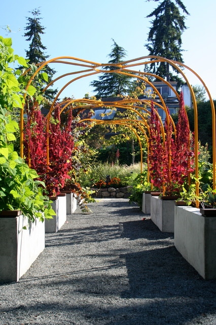 Sunny garden contemporary landscape seattle by for Sunny landscape designs
