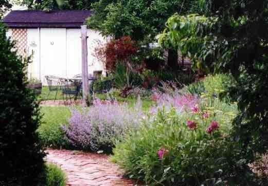 Sunny perennial garden modern landscape dc metro for Sunny landscape designs