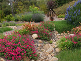 mediterranean landscape Fall Is Calling: What to Do in Your October Garden (10 photos)