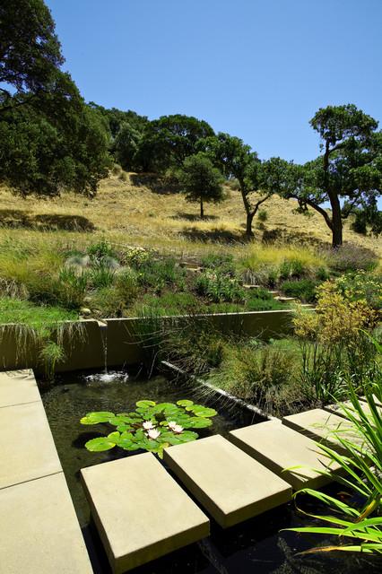 Sunol Landscape modern-landscape