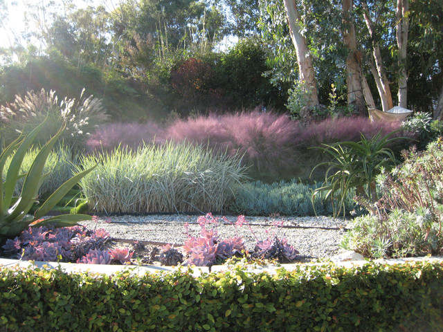 Sunset residence modern landscape los angeles by for Modern grasses landscaping