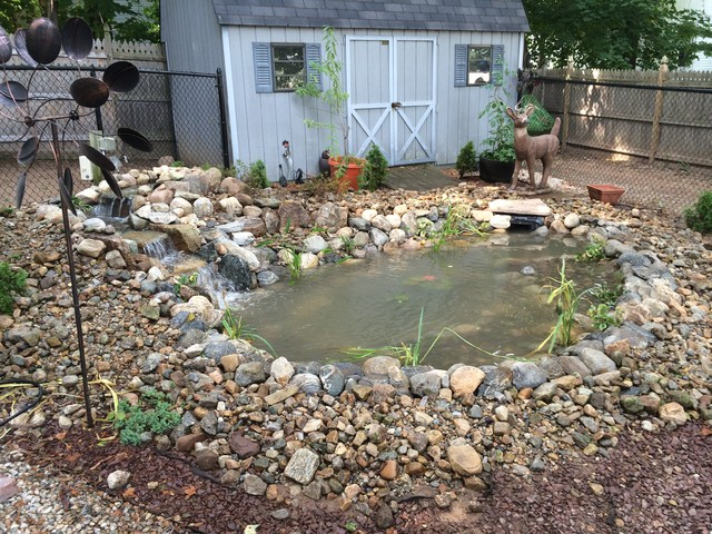 Surette 11 39 x 16 39 backyard pond installation hamden for Garden pond installers