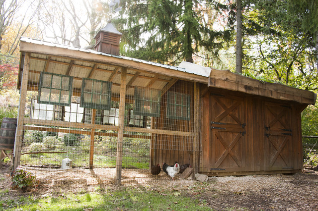 Sustainable chicken coop eclectic exterior