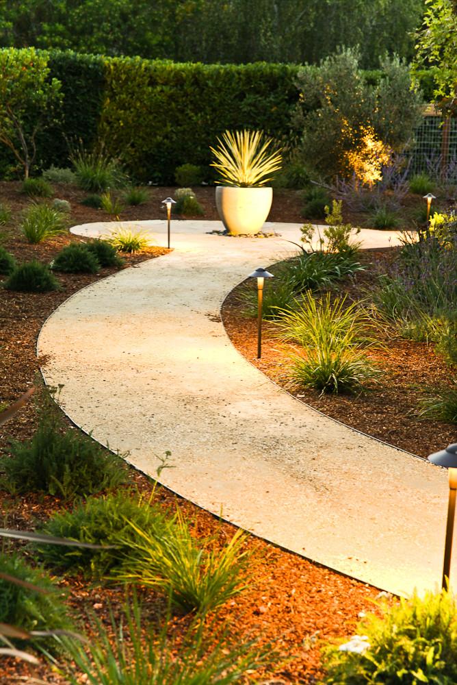 Sustainable Hillsborough Garden