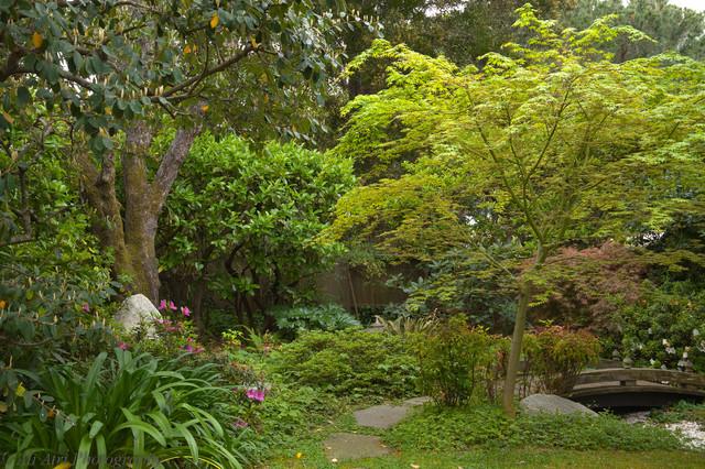 Suzanne's Garden traditional-landscape
