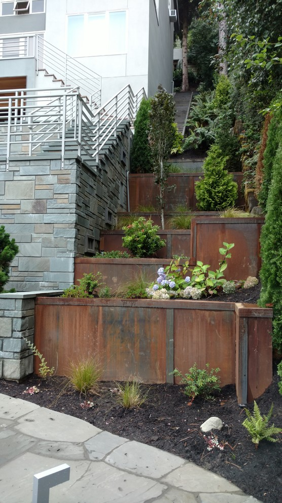 This is an example of a contemporary full sun side yard landscaping in Seattle.
