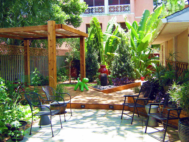 Tampa Modern Landscape Tropical Landscape Tampa By Tampa Landscape Design