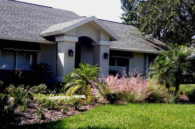 Tampa palms contemporary landscape tampa by tampa for Landscape design tampa