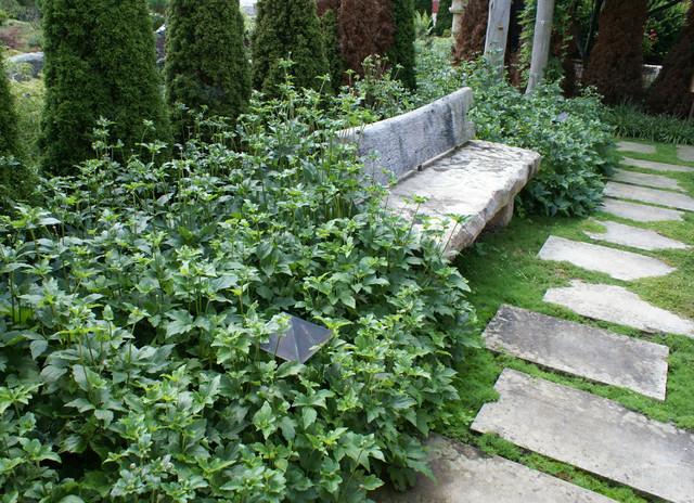 Tarentum garden for Mtr landscape architects