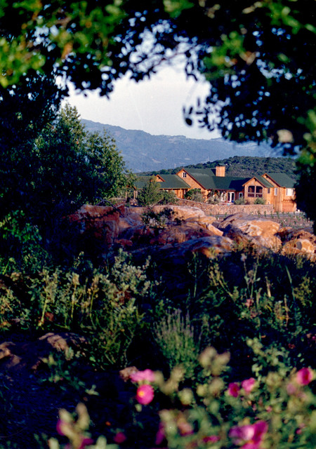 Taylor Residence traditional-landscape
