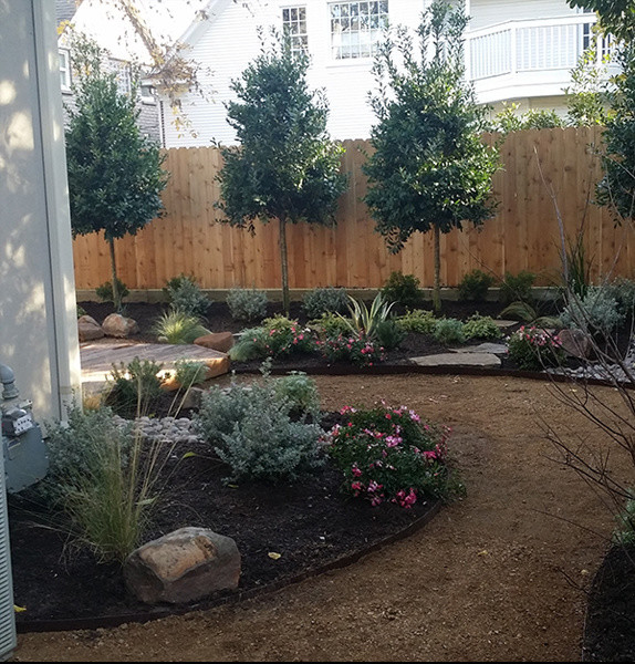 Texas native backyard landscape houston by hdg for Garden design houston